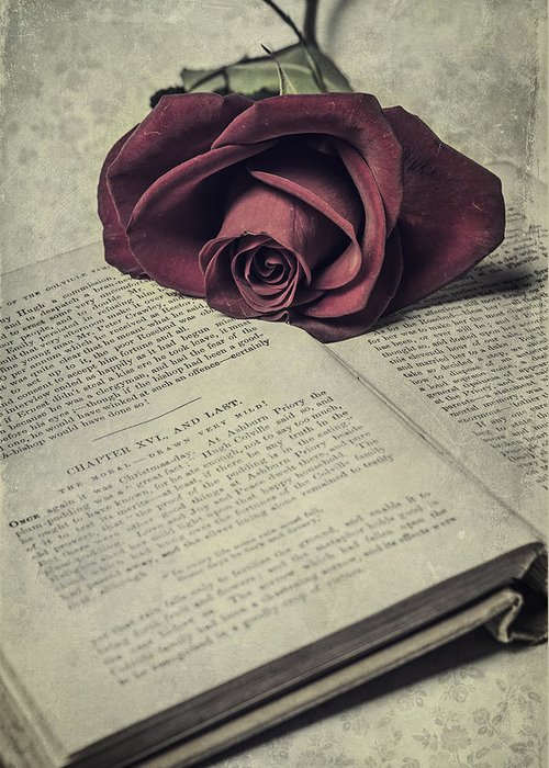Book Greeting Card featuring the photograph Love Stories by Joana Kruse