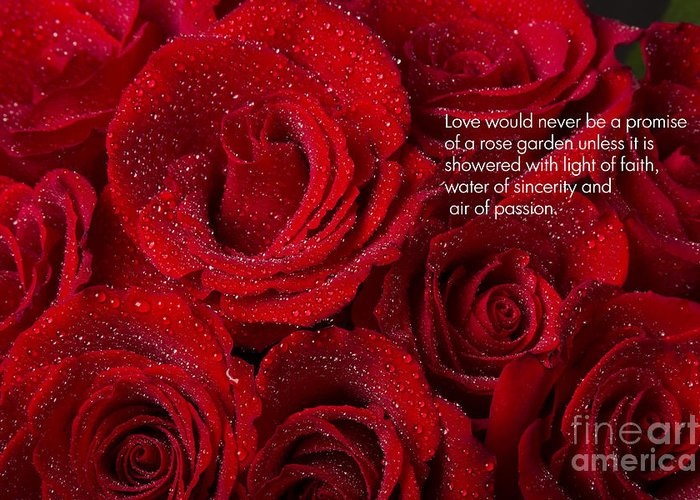 Love Greeting Card featuring the photograph Love Would Never Be A Promise Of A Rose Garden by James BO Insogna