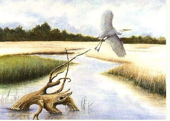 Egret Greeting Card featuring the painting Low Country Marsh by Ben Kiger