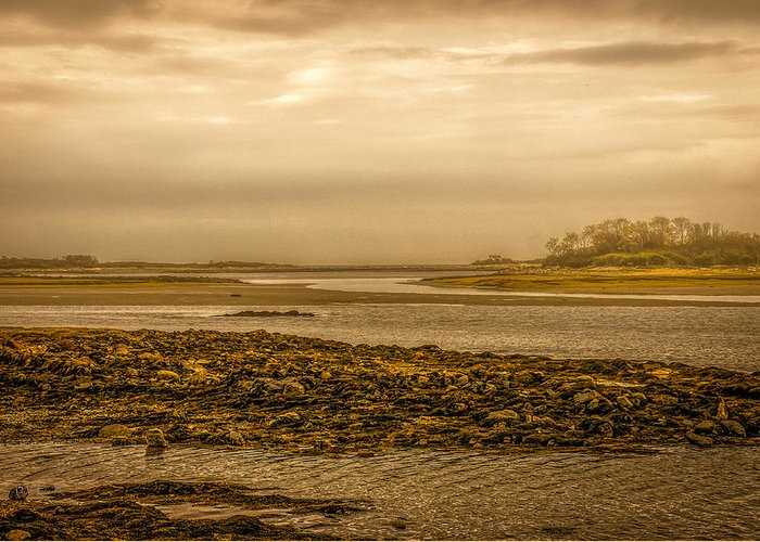 Atlantic Ocean Greeting Card featuring the photograph Low Tide Cape Porpoise Maine by Bob Orsillo