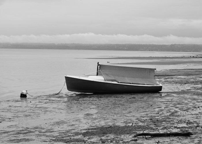 Boat Greeting Card featuring the photograph Low Tide by Paulina Roybal