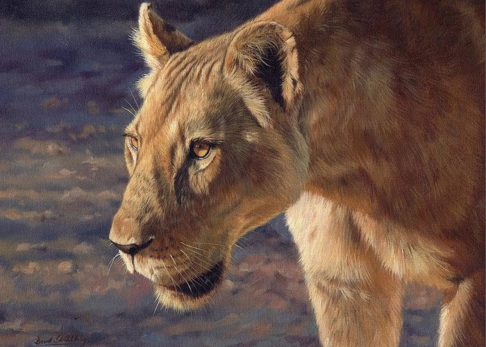 Lioness Greeting Card featuring the painting Luangwa Princess by David Stribbling