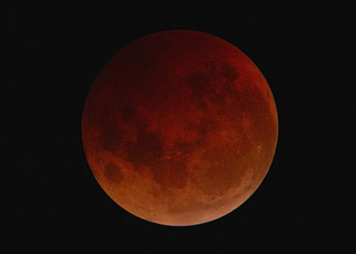 Moon Greeting Card featuring the photograph Lunar Eclipse by Cynthia Wallentine
