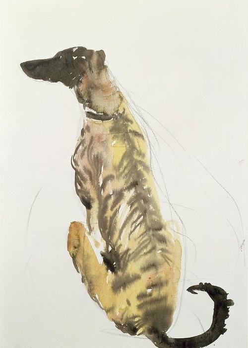 Still Life Greeting Card featuring the painting Lurcher Sitting by Lucy Willis