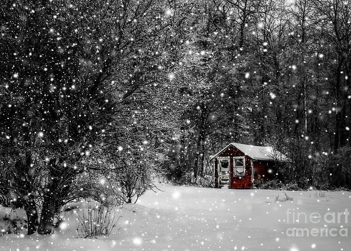 Winter Greeting Card featuring the photograph Made In Maine Winter by Brenda Giasson