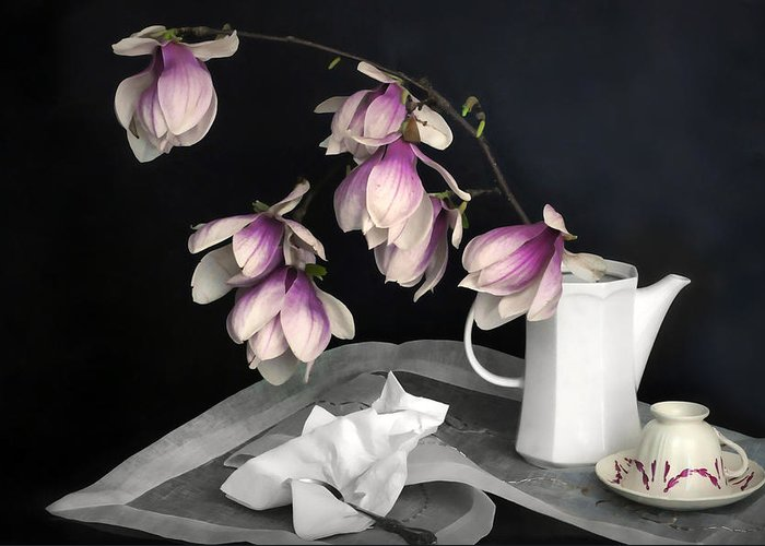 Still Life Greeting Card featuring the photograph Magnolia Still by Diana Angstadt