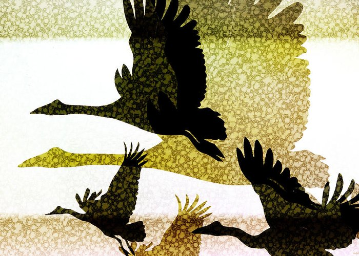 Animals Greeting Card featuring the digital art Magpie Geese In Flight by Holly Kempe