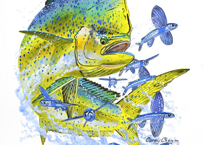 Dolphin Greeting Card featuring the painting Mahi Mahi by Carey Chen