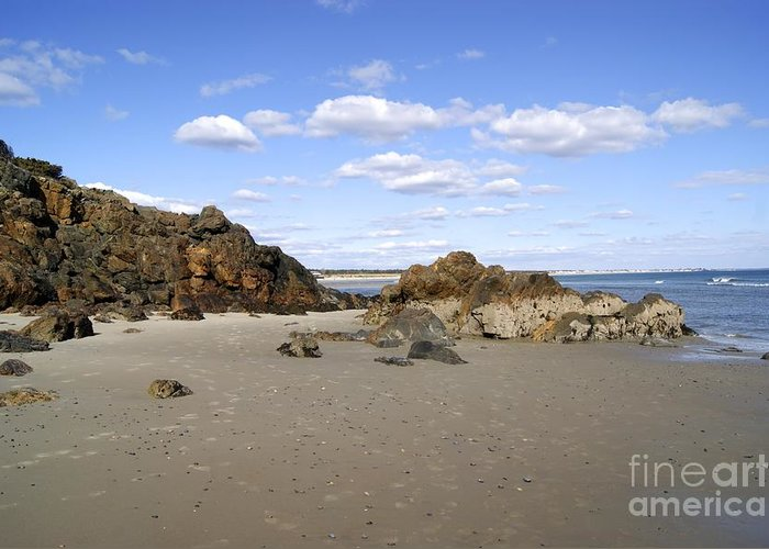 Greeting Card featuring the photograph Maine Beach by Elizabeth-Anne King