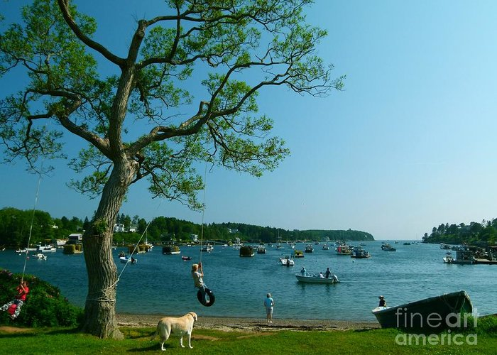 Summer Greeting Card featuring the photograph Maine Summer Day At Mackerel Cove  by Christine Stack
