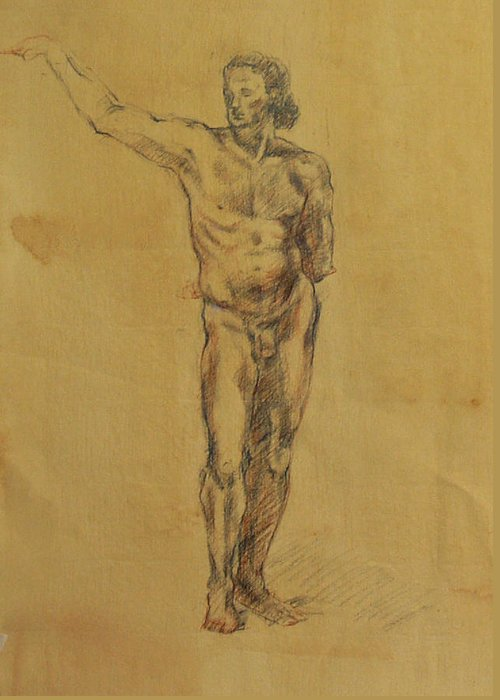 Nude Greeting Card featuring the drawing Male Nude 5 by Becky Kim