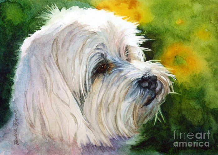 Maltese Greeting Card featuring the painting Maltese by Bonnie Rinier