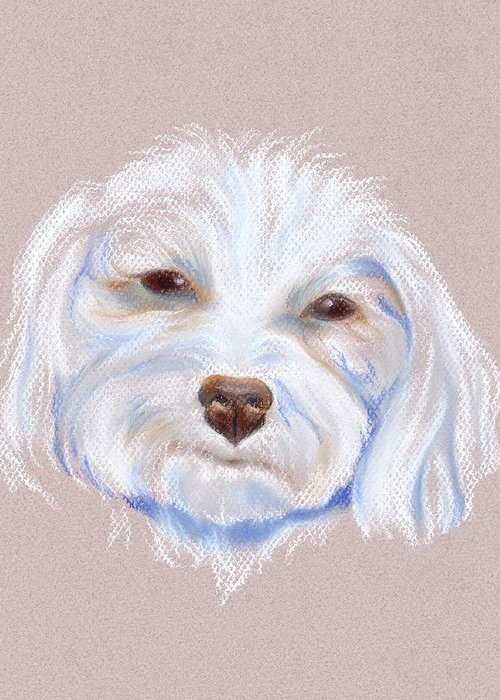 Maltipoo Greeting Card featuring the pastel Maltipoo With An Attitude by MM Anderson