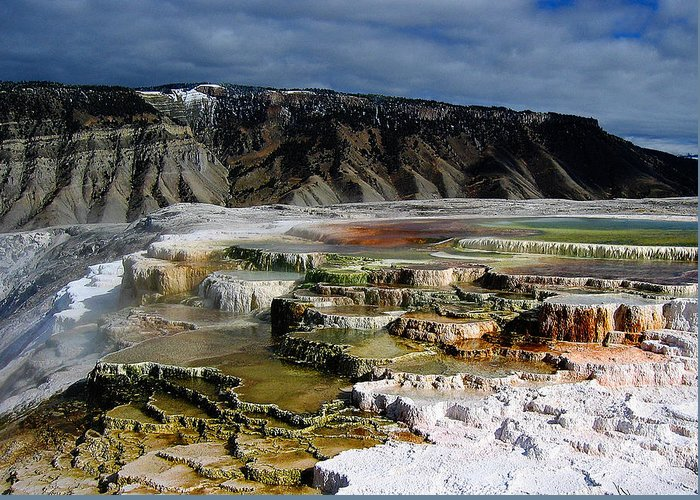 Mammoth Hot Springs Greeting Card featuring the pyrography Mammoth Hot Springs by Robert Woodward
