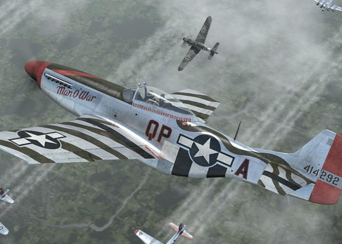 Mustang Warbird Greeting Cards