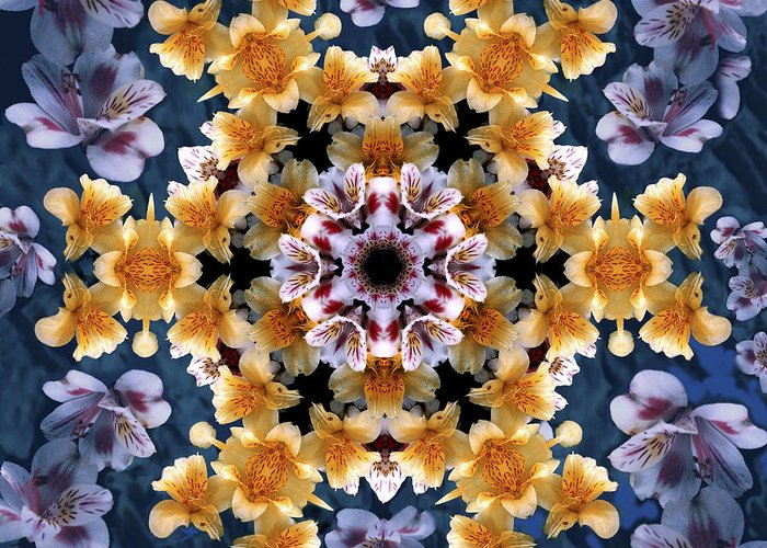Mandala Greeting Card featuring the digital art Mandala Alstro by Nancy Griswold