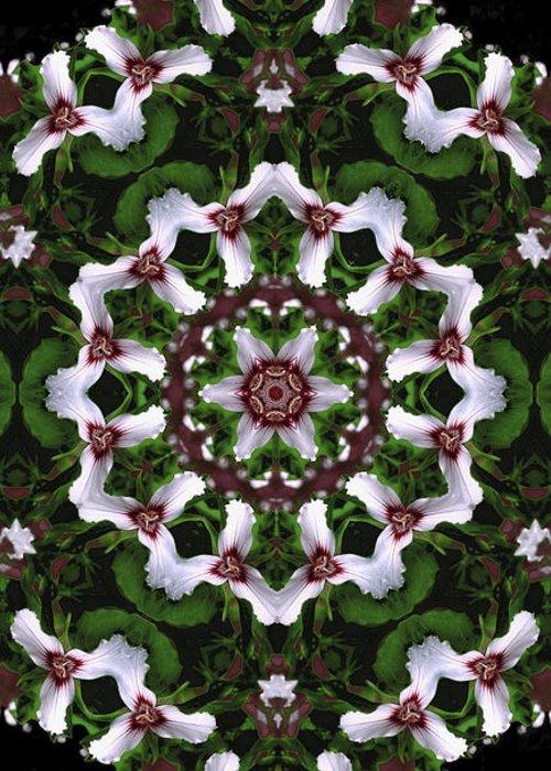 Mandala Greeting Card featuring the digital art Mandala Trillium Holiday by Nancy Griswold