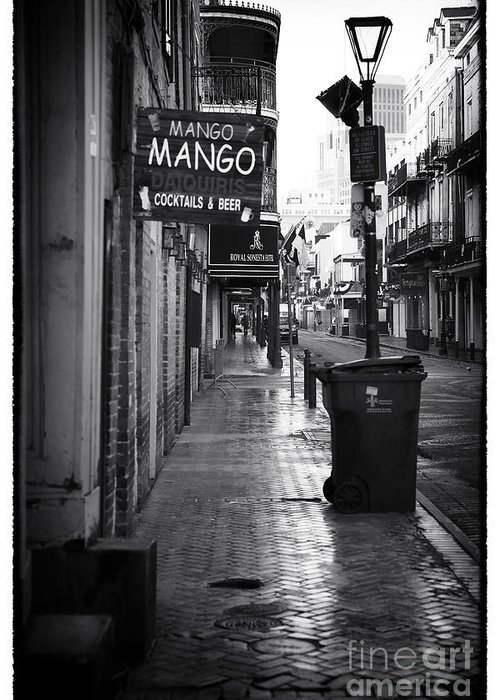 Mango Mango Greeting Card featuring the photograph Mango Mango by John Rizzuto