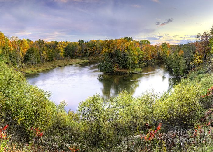 Manistee National Forest Greeting Cards