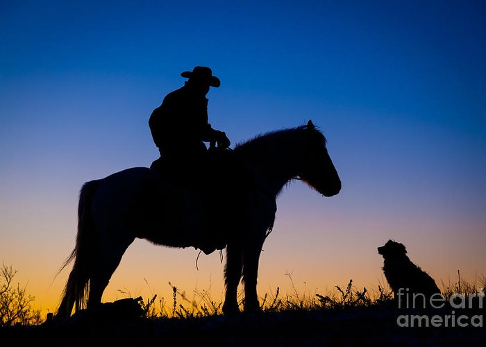 America Greeting Card featuring the photograph Man's Best Friend by Inge Johnsson