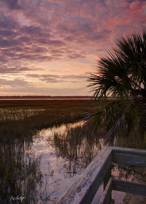 Colleton River Greeting Cards