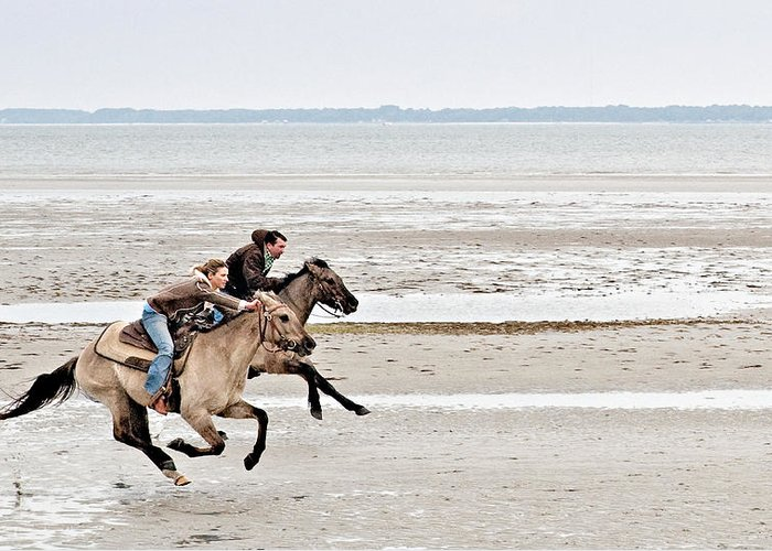 Horse Greeting Card featuring the photograph Marsh Tacky Race by Bill LITTELL