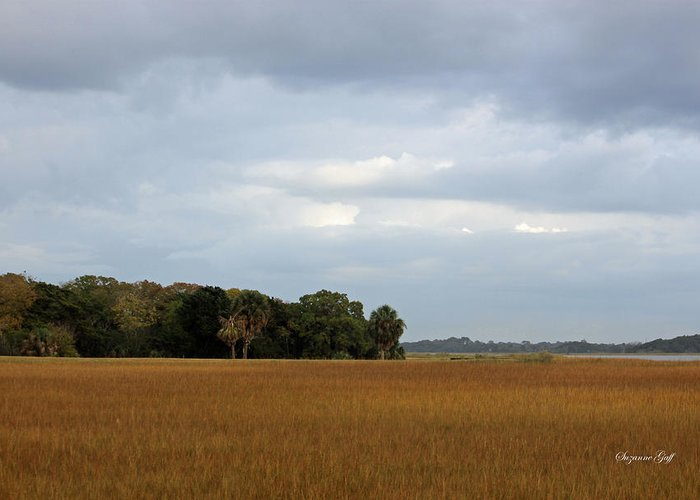 Marsh Greeting Card featuring the photograph Marsh View by Suzanne Gaff