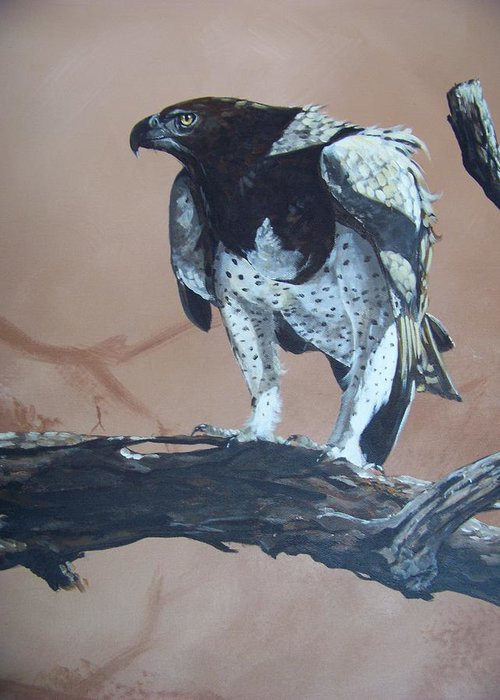 Martial Eagle Greeting Card featuring the painting Martial Eagle by Robert Teeling