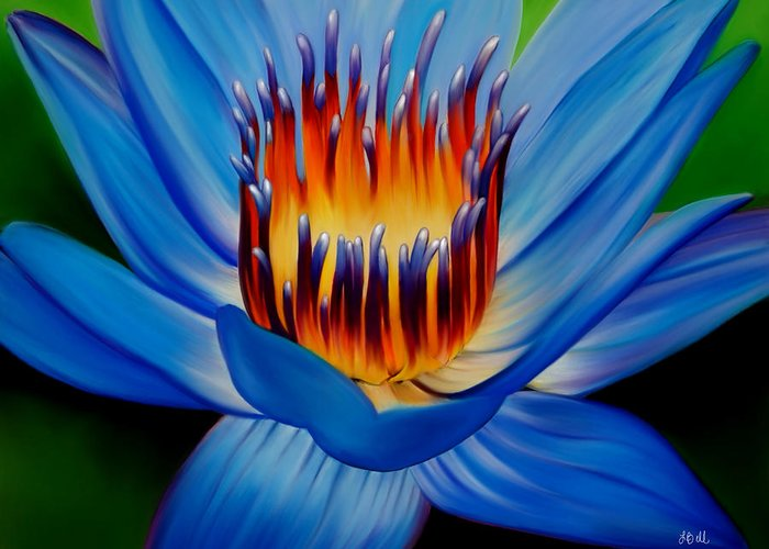 Water Lily Greeting Card featuring the painting Marvel by Laura Bell