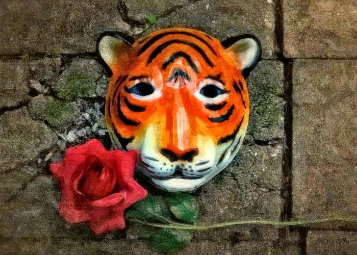 African Tiger Greeting Cards