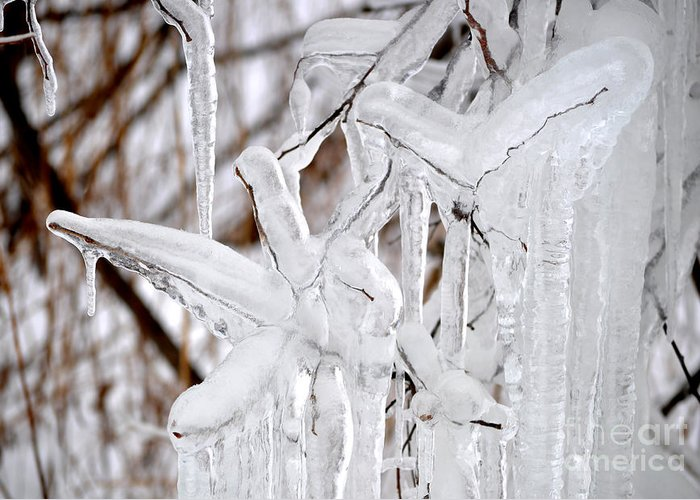Icicle Greeting Card featuring the photograph Massive Icicles by Staci Bigelow