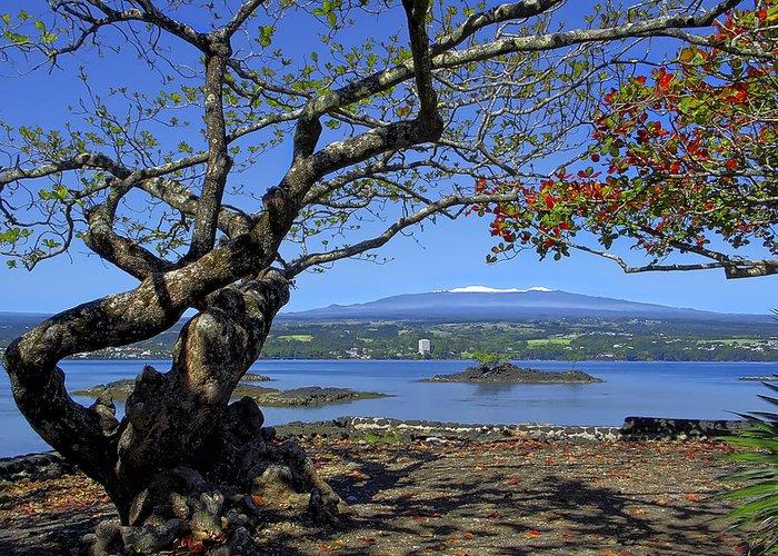 mauna Kea Greeting Card featuring the photograph Mauna Kea Volcano Over Hilo Bay Hawaii by Daniel Hagerman