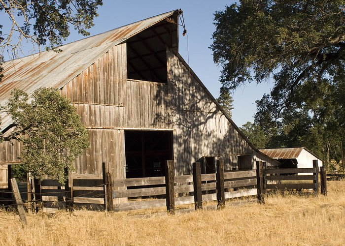 Barn Greeting Card featuring the photograph Mccourtney Barn by William Havle