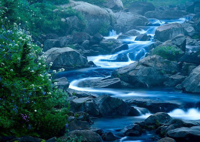 Stream Greeting Card featuring the photograph Meandering Stream by Chris McKenna