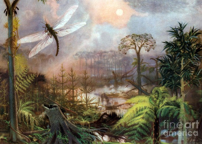 Flora Greeting Card featuring the photograph Meganeura In Upper Carboniferous by Science Source