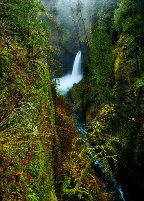 Lush Greeting Card featuring the photograph Metlako Falls by Darren White