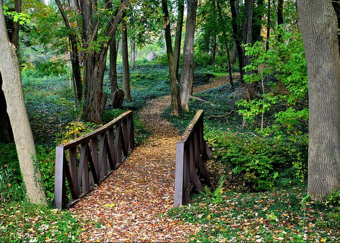 Landscape Greeting Card featuring the photograph Metroparks Pathway by Frozen in Time Fine Art Photography