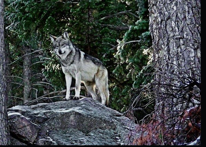 Designs Similar to Mexican Grey Wolf Digital Art