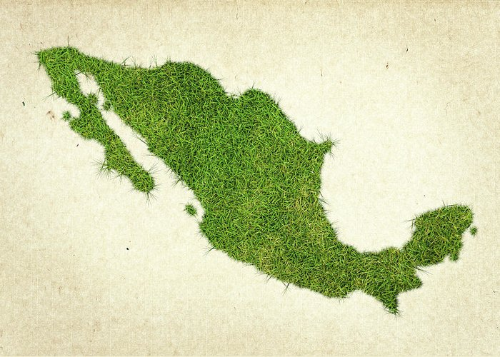 Map Of Mexico Greeting Card featuring the photograph Mexico Grass Map by Aged Pixel