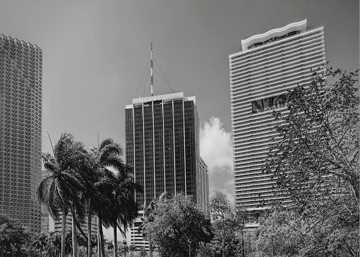 Park Greeting Card featuring the photograph Miami Cityscape Bw by Rudy Umans