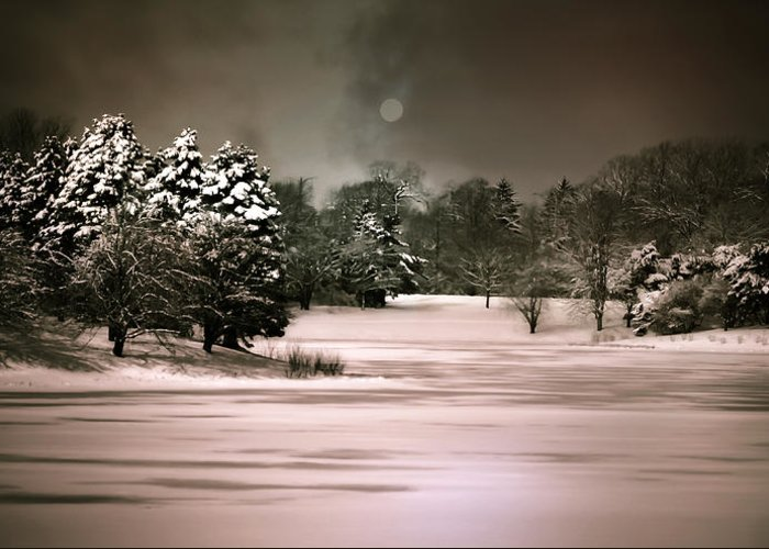 Snow Scene Greeting Card featuring the photograph Midnight Stillness by Julie Palencia