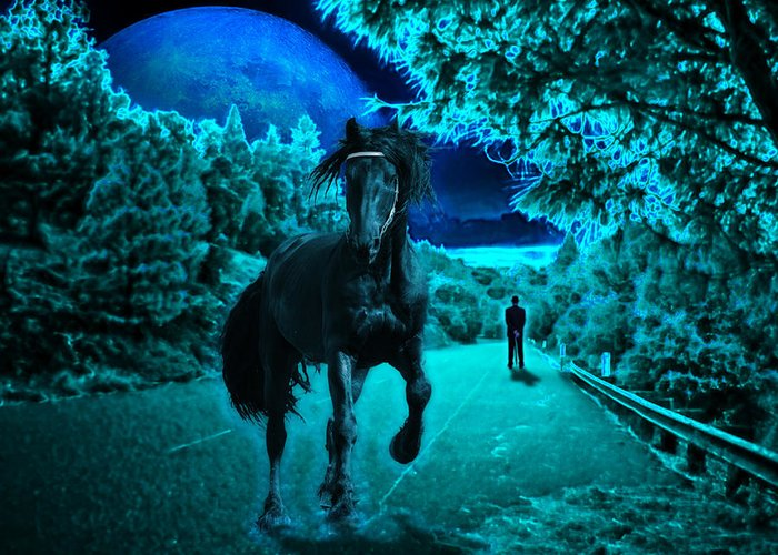 Horse Greeting Card featuring the photograph Midnight Vision by Jim Painter