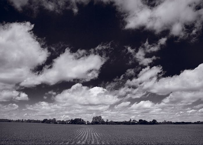 Cloud Greeting Card featuring the photograph Midwest Corn Field Bw by Steve Gadomski