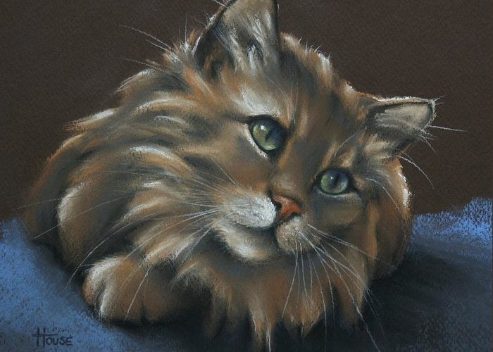 Tabbycat Greeting Card featuring the drawing Miko by Cynthia House