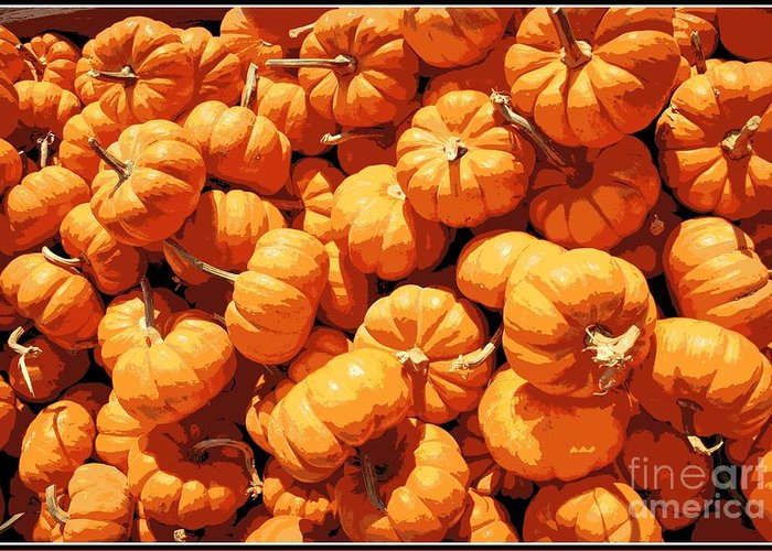 Pumpkins Greeting Card featuring the photograph Mini Pumpkins by Beth Ferris Sale
