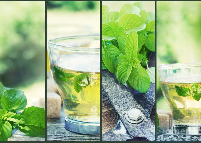 Background Greeting Card featuring the photograph Mint Tea Collage by Mythja Photography