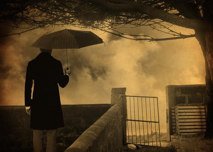 Rain Greeting Card featuring the photograph Miracle by Taylan Apukovska