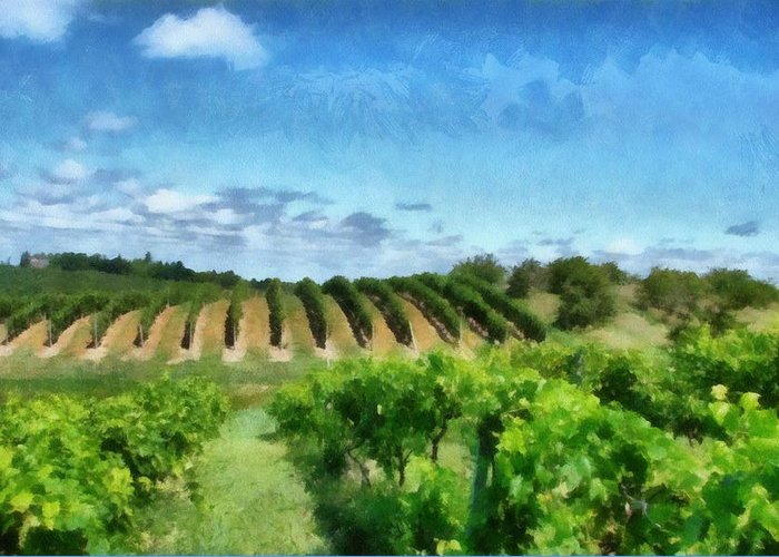 Vineyards Greeting Card featuring the photograph Mission Peninsula Vineyard Ll by Michelle Calkins