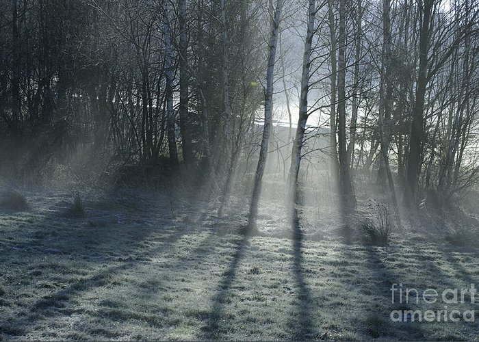 Sunrise Greeting Card featuring the photograph Mist by Sarka Olehlova