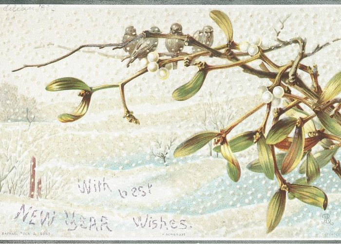 Greetings Greeting Card featuring the painting Mistletoe In The Snow by English School
